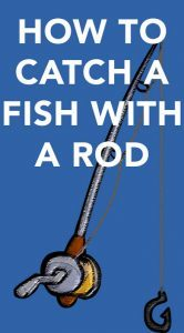 how to catch a fish with a rod