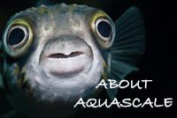 more info about aquascale and aquarium uk